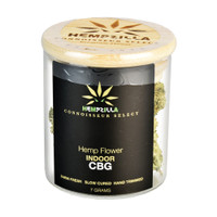 Hempzilla Premium Indoor CBG Flower Jar | 7.0g | Wholesale