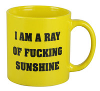I am a Ray of Fucking Sunshine Mug - 22oz
