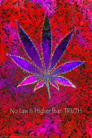 "No Law Higher Than Truth Poster - 24""x36"" - AFG Distribution"