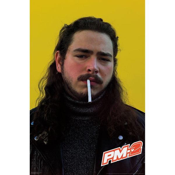 Post Malone Poster | Posty OG | Master Distributor